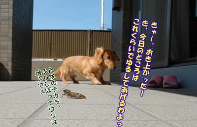 070801_07.jpg