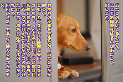 080713_01.jpg