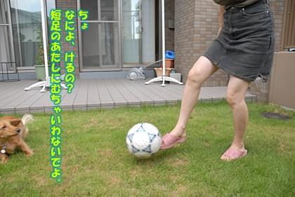 080815_04.jpg