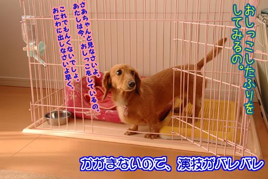 091006_03.jpg