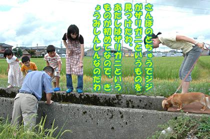 20080817_484.jpg