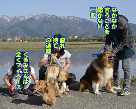 画像04.jpg
