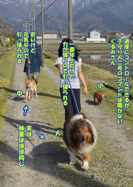 画像02.jpg